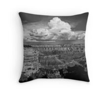 Grand View in B&W Throw Pillow