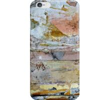 show me everything there is to know about love... iPhone Case/Skin