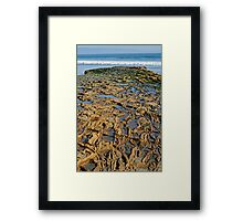 Rocky Roads Can Be Beautiful Framed Print