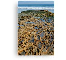 Rocky Roads Can Be Beautiful Canvas Print