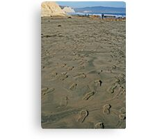 Well Traveled Canvas Print