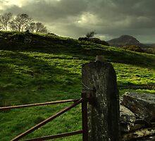 gate by Jordan Whipps