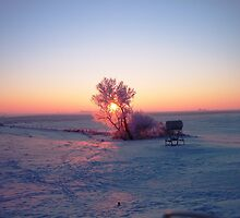 Breathtaking Winter Sunrise by maragoldlady