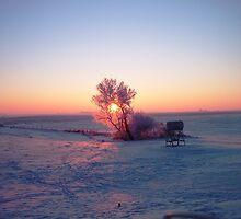 Breathtaking Winter Sunrise by maragoldlady