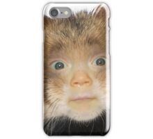 Laicey the Hamster iPhone Case/Skin