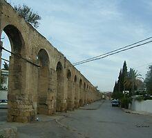 Roman Aqueduct by Tom Gomez