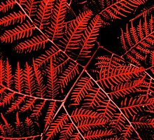 Flaming Bracken by moonshinepdise