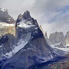 PATAGONIA by Roantrum
