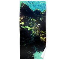 Stained glass reef Poster