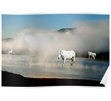 Unicorns in the Mist Poster