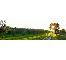 Tuscany: Sunset at countryside Photographic Print