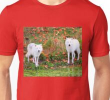 Our First Meeting Unisex T-Shirt