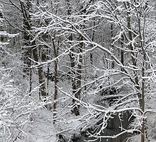 Snowy Creek by mnkreations