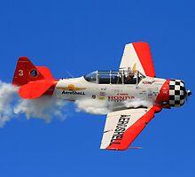 Airshow by Bradley Miller