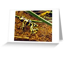 Poisonous Dart Frog Greeting Card