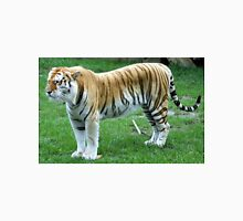 Tiger standing. Unisex T-Shirt
