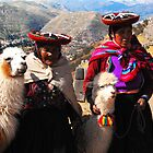 Women and llamas in Cusco, Peru by Monica Di Carlo