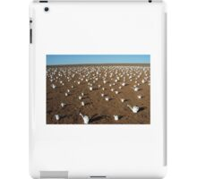 Desert Art. iPad Case/Skin
