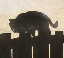 Crespo - Shadow by Camilla
