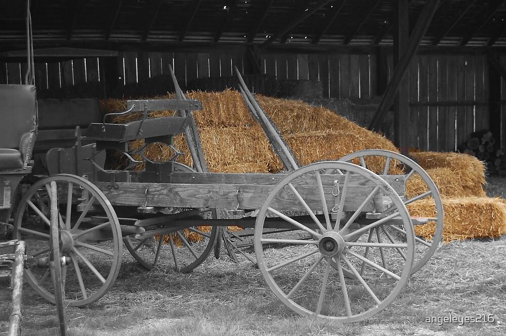 amish wagon by angeleyes216