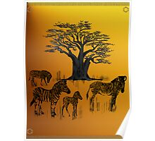 Zebra and Baobab Tree Poster