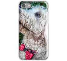 Baloo The Labradoodle iPhone Case/Skin