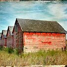 Red Barns Series 1 by Amanda White