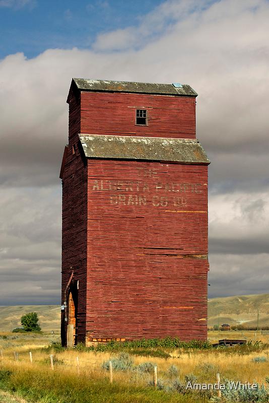 Grain Elevator Dorothy, Alberta by Amanda White