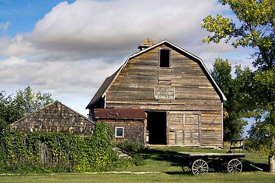 Livery Barn Rowely, Alberta by Amanda White