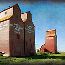 Grain Elevators, Rowley Alberta by Amanda White