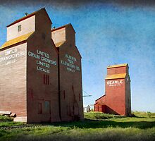 Grain Elevators, Rowley Alberta by Amanda White