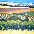 View from Chapel Hill Winery, McLaren Vale by Alexandra Felgate