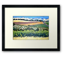 View from Chapel Hill Winery, McLaren Vale Framed Print