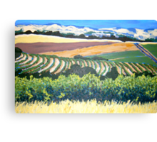 View from Chapel Hill Winery, McLaren Vale Canvas Print