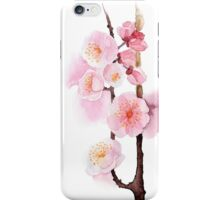 watercolor flowers of apricot iPhone Case/Skin