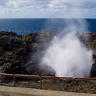 The Blowhole, Kiama, NSW by Arthur Richardson