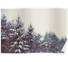 Winter Daydream #2 Poster