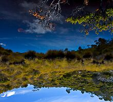 Reflection Series 1 by Ross Jardine