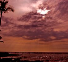 Tropical Sunset by Kay Martin