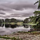 Clouds, Reflections and a Bench by Teresa Zieba