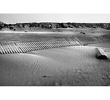 Walk on the beach  Photographic Print