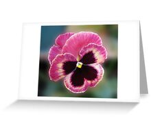 Cute Little Pansy Face Greeting Card
