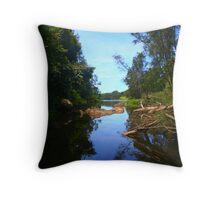 Crystal Lake Throw Pillow