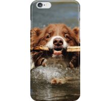 First Swim of the Year iPhone Case/Skin