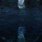The Mirror World by Jennifer Rhoades