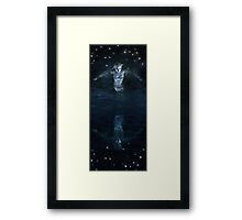 The Mirror World Framed Print
