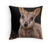 Yes I'm looking at you Sir... Throw Pillow