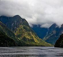 Doubtful Sound, New Zealand by Trishy