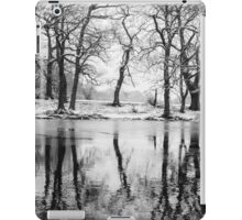 Snowy Disposition, London iPad Case/Skin