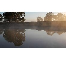 Reflecting Eucalypts Photographic Print